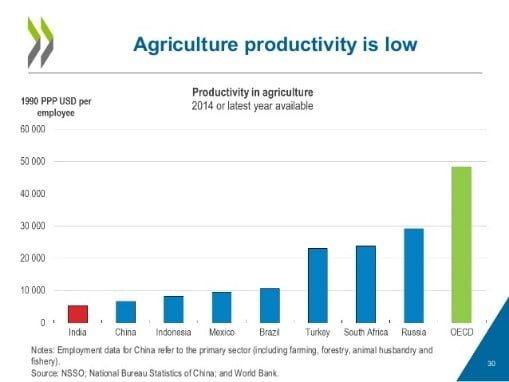 Productivity in agriculture